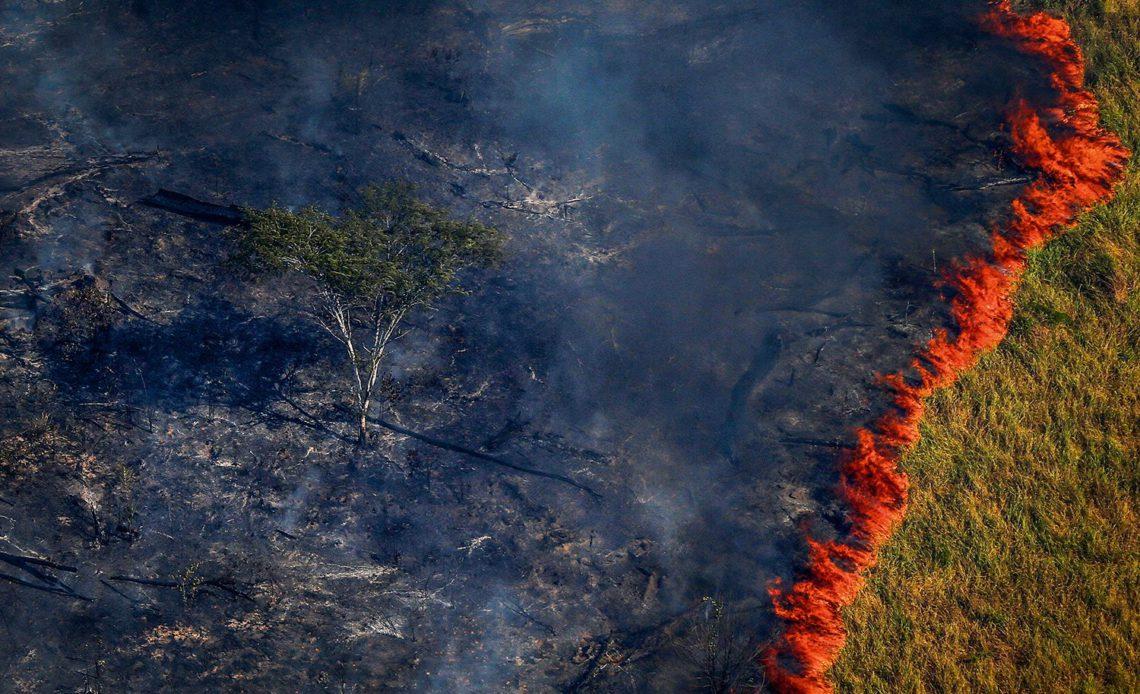Incêndios na Amazónia brasileira batem recorde de 13 anos em junho